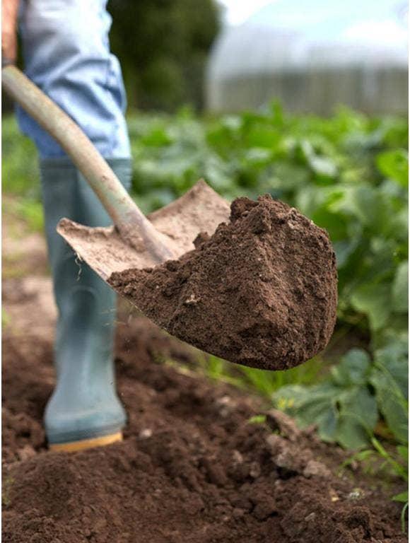 How to Refresh Garden Soil