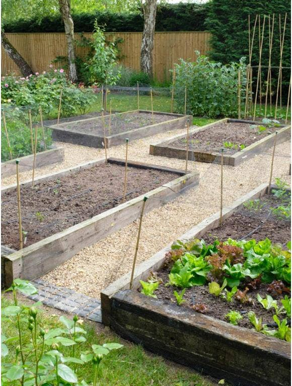 A raised bed garden with flowers and vegetables.