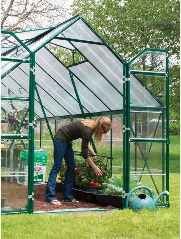 Greenhouse Growing- Plant Care