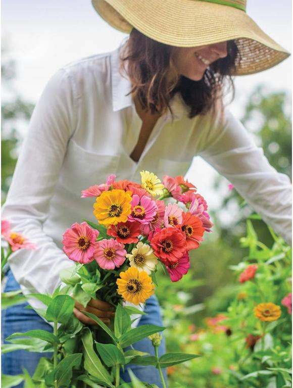 Cut Flower for Bouquets