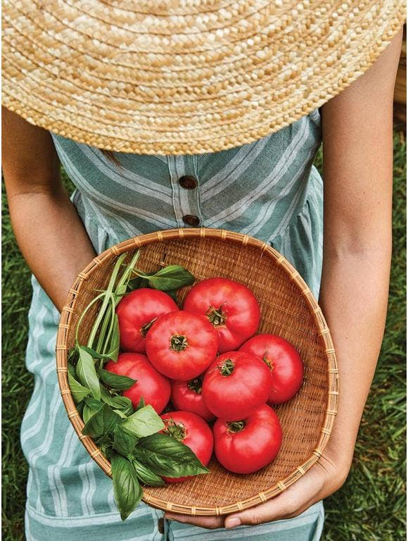 10 Tips for Growing Perfect Tomatoes