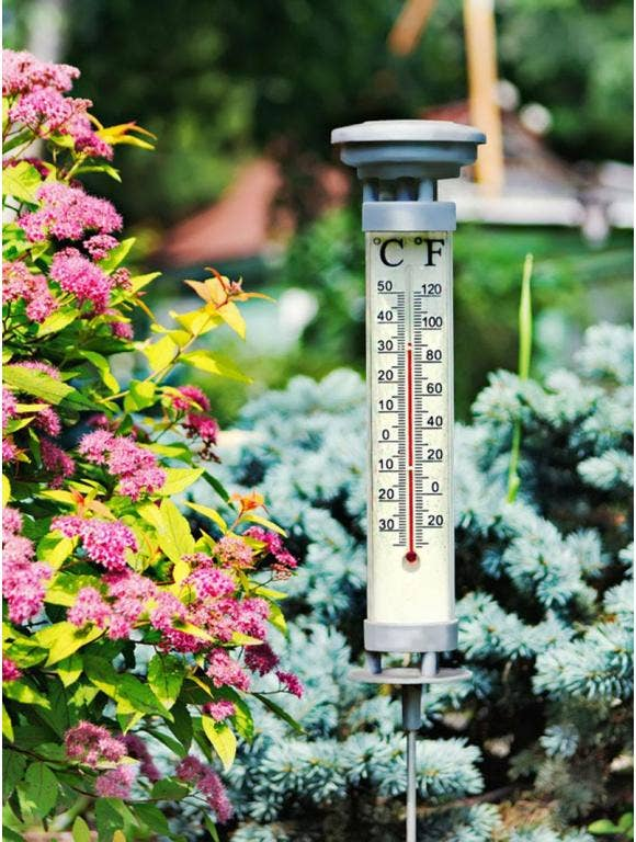 Why Garden Growing Zones Are Important and How to Find Yours