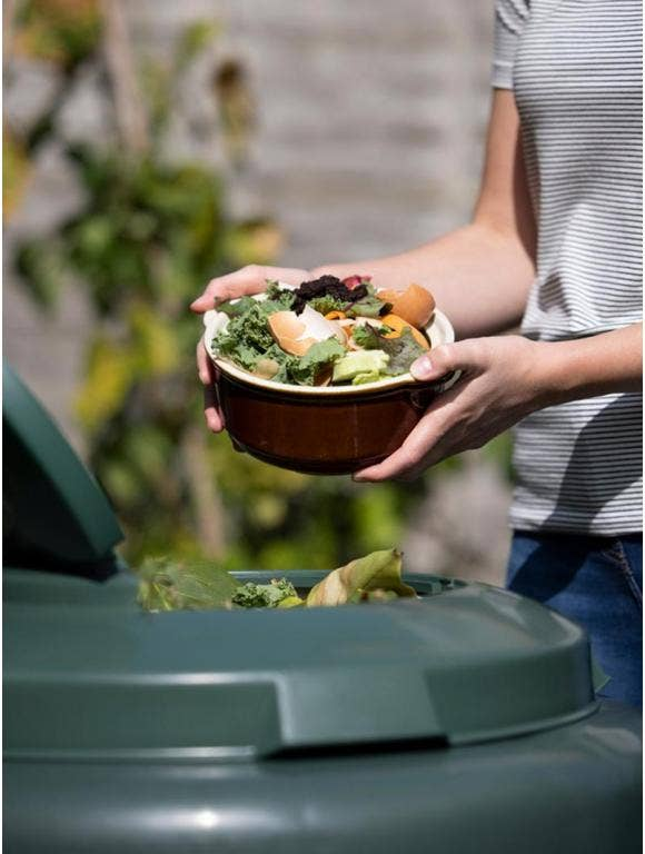 Composting 101: When, Why and How to Use Compost in a Garden