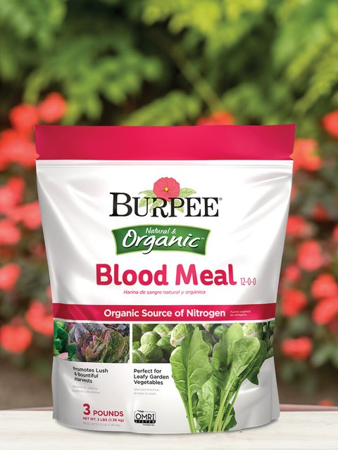 Burpees Natural Organic Blood Meal 12-0-0