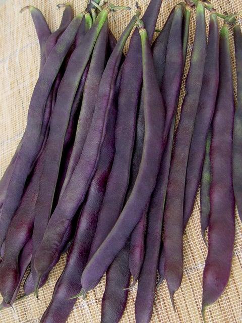 Bean, Pole, Trionfo Violetto