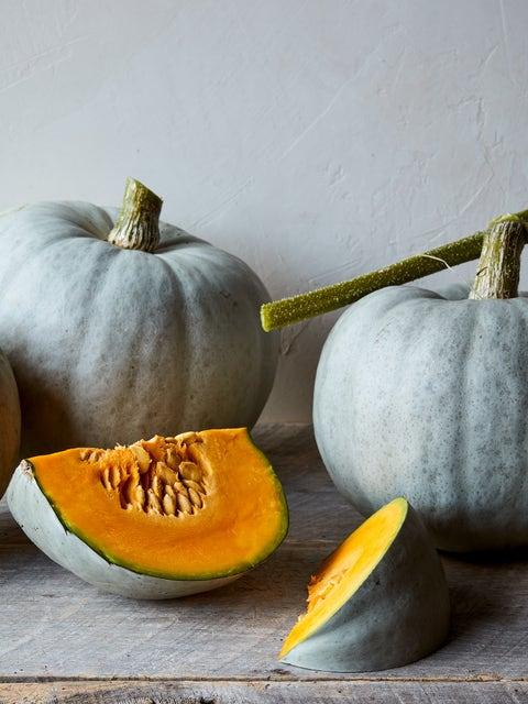 Squash, Winter, Harvest Moon