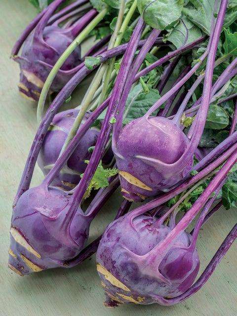 Kohlrabi, Purple Vienna Organic
