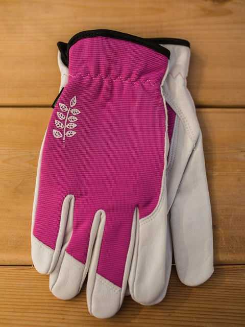 Womens Kobalt Goatskin  Gloves - Fuchsia