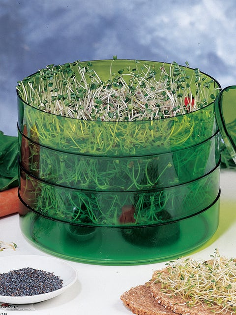Three Tier  Seed Sprouter