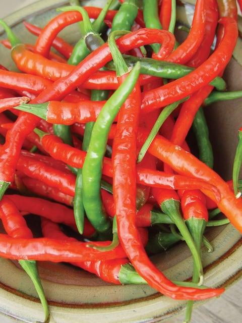 Pepper, Hot, Long Red Slim Cayenne