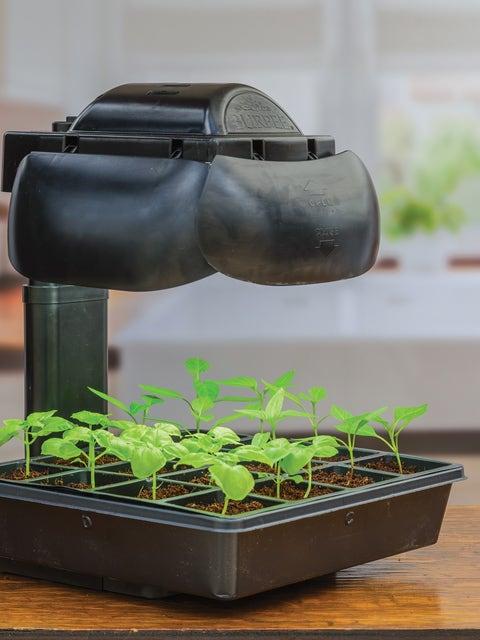 Tabletop Growing Set