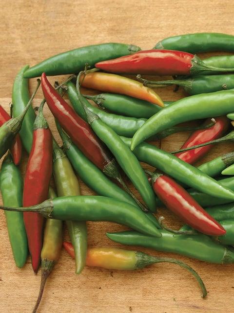 Pepper, Hot, Thai Hot