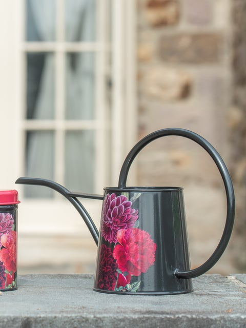 British Bloom Indoor Watering Can