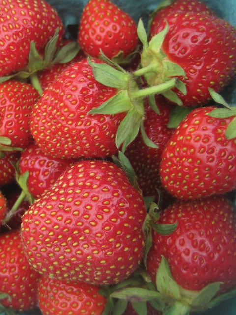 Strawberry, Jewel
