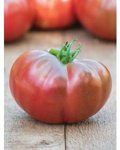 Tomato, Darkstar Hybrid