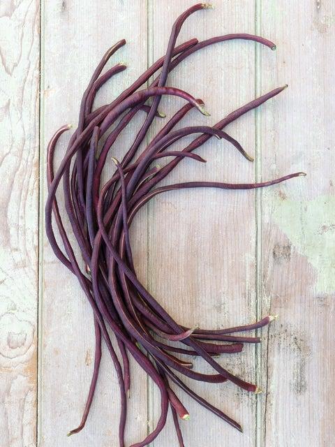 Bean, Asparagus Red Podded