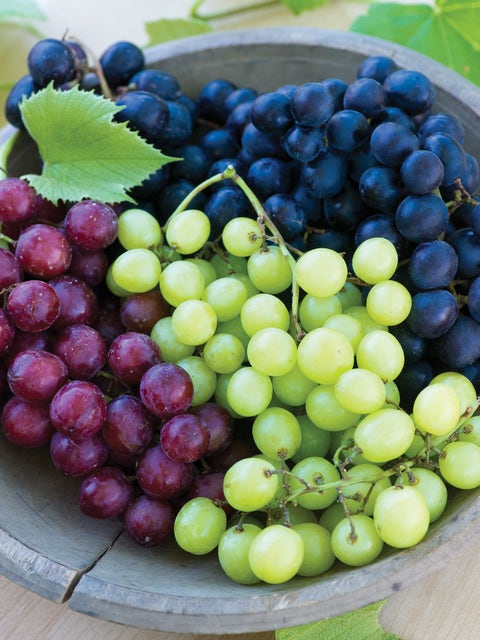 Grape, Seedless Collection