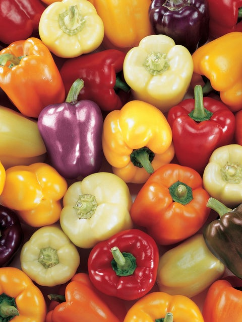 Pepper, Sweet, Carnival Blend