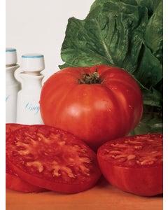 Tomato, Burpees Supersteak Hybrid