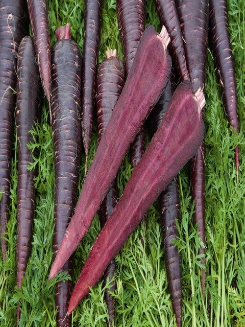 Carrot, Deep Purple Hybrid