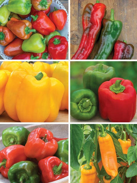 Pepper Madness, Sweet Pepper Collection