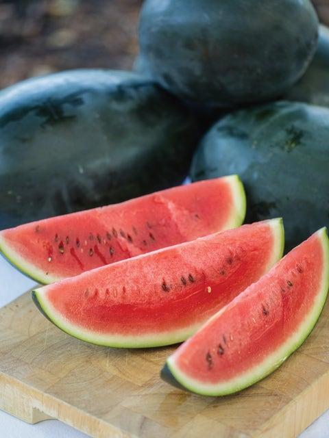 Watermelon, Little Darling Hybrid