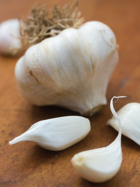 Garlic, Early Italian