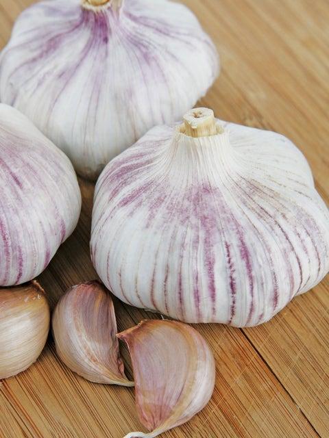 Garlic, Chinese Pink