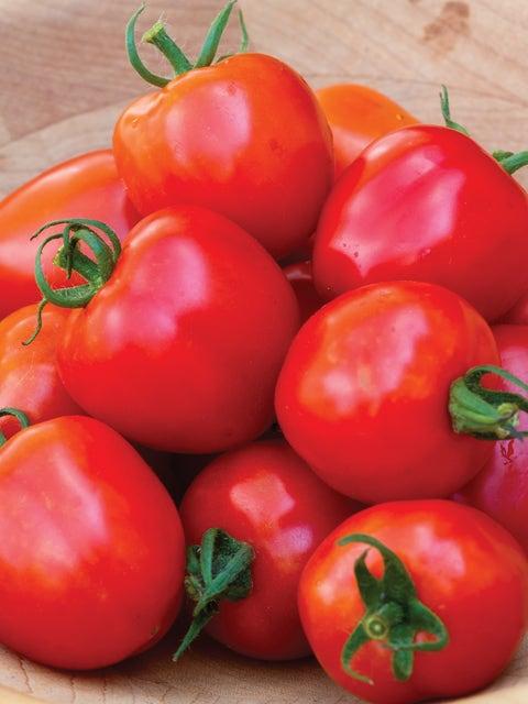 Tomato, Tomatoberry Garden Hybrid