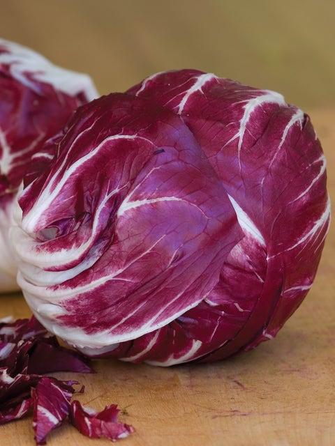 Radicchio, Chicory Red Verona