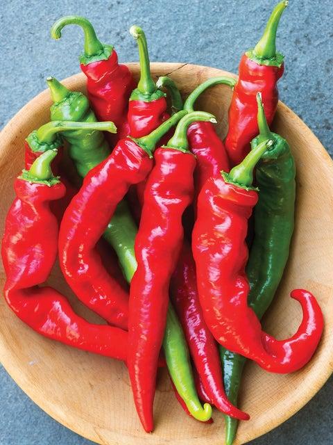Pepper, Hot, Cheyenne Hybrid