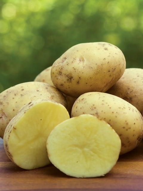 Potato, Yukon Gold