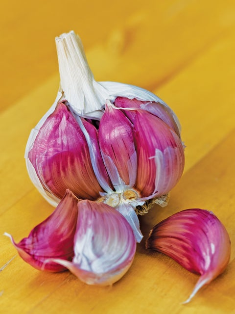 Garlic, Ajo Rojo