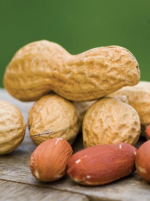 Peanut, Jumbo Virginia