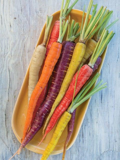 Carrot, Kaleidoscope Blend