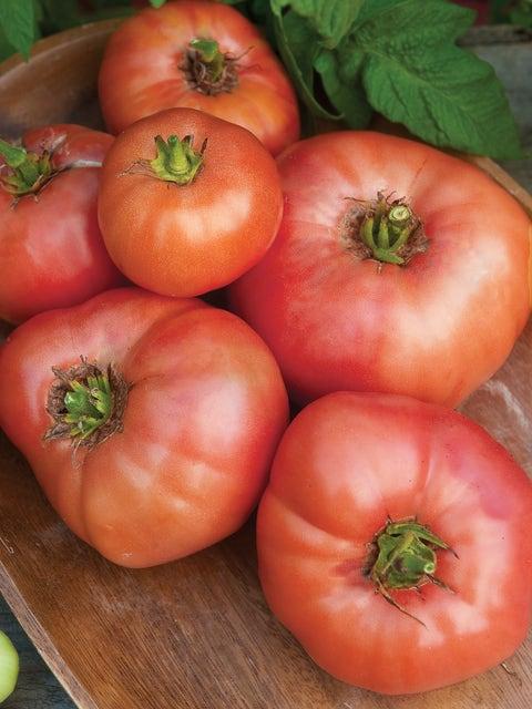 Tomato, Omars Lebanese