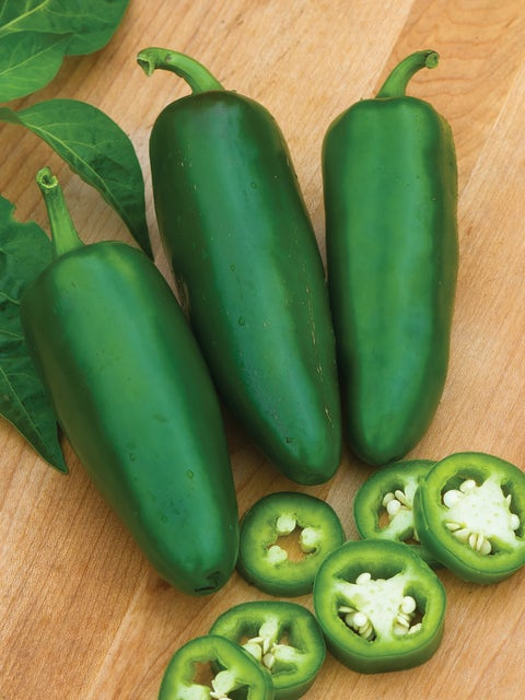 Pepper, Hot Jalapeno, Big Guy Hybrid