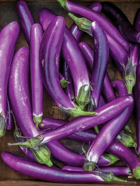 Eggplant, Millionaire Hybrid