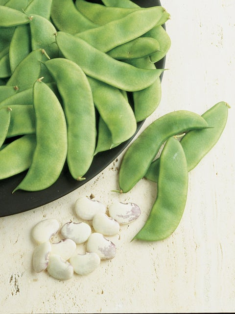Bean, Cannelino Organic