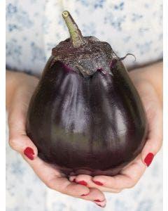 Eggplant, Meatball Hybrid