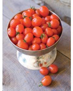 Tomato, Napa Grape Hybrid