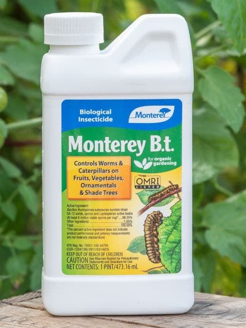 Organic Biological Insecticide B. T.