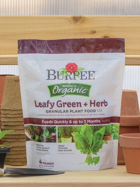 Burpee Natural Organic Leafy Green and Herb Plant Food 5-3-3