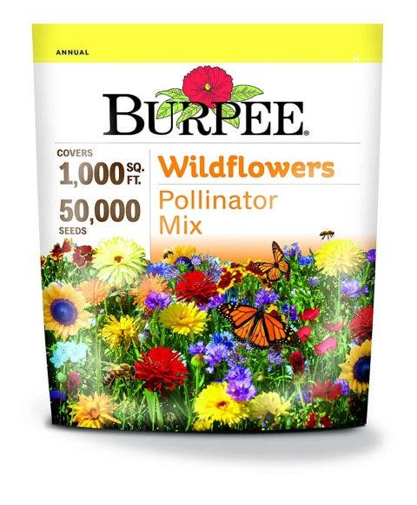 Wildflowers, Pollinator Mix