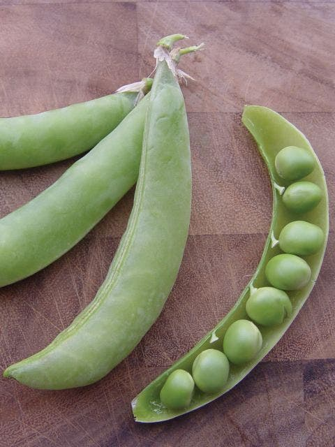 Pea, Bend and Snap
