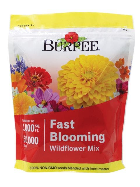 Wildflower Mix, Fast Blooming
