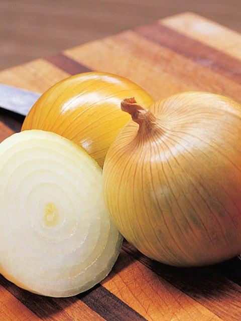 Onion, Candy Hybrid