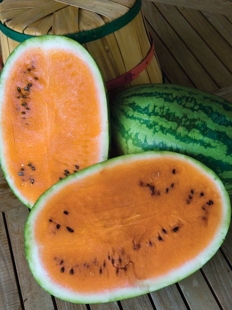 Watermelon, Orange Tendersweet