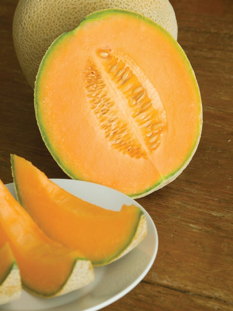 Cantaloupe, Hales Best Jumbo