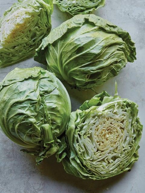 Cabbage, Overture Hybrid